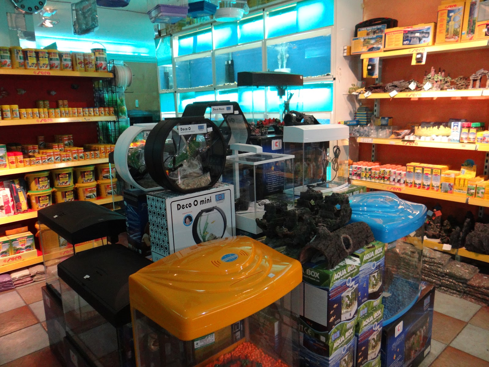 Fish aquarium for sale in qatar - Selection Of Some Tanks Food And Fish