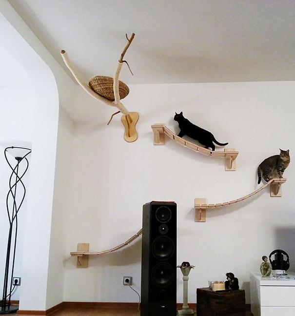 Como deixar sua casa mais confortavel e divertida para seus gatos: Pontes e ninhos