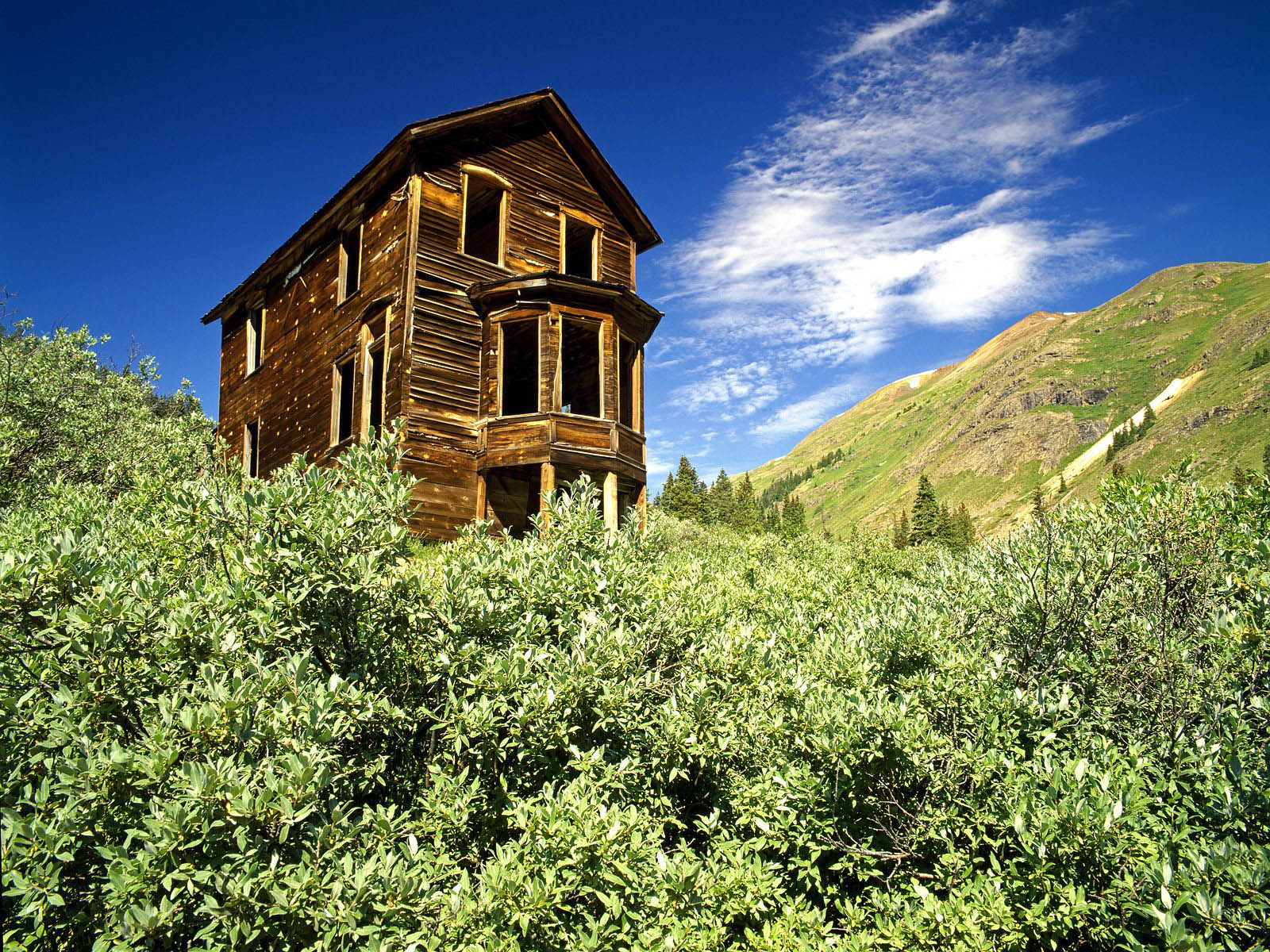 wallpaper: wood house wallpapers