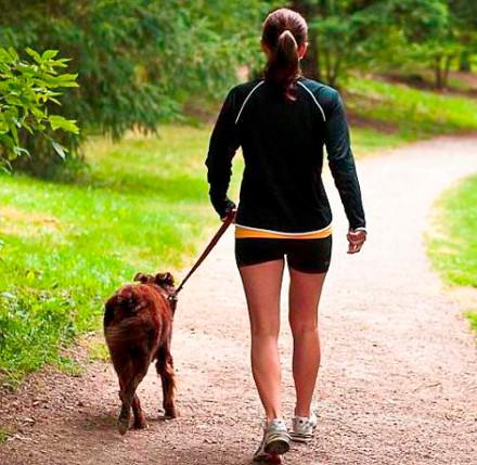 Paseando al perro por el lago 10