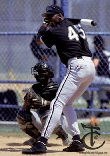 Michael Jordan plays baseball