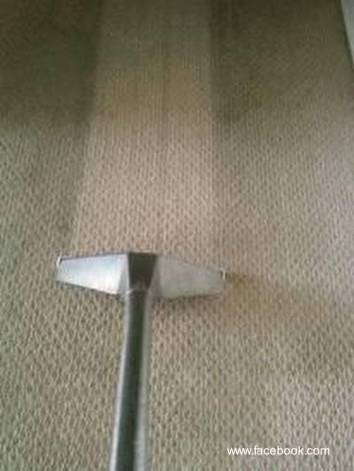 Arquitectura de casas limpieza al vapor de las alfombras - Productos para limpiar alfombras en casa ...