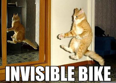 Les images qui VOUS font rire !!!  [ouais bon ca va hein] - Page 2 Funny-pictures-of-cats-dot-info-040