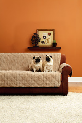 Sure Fit Slipcovers Life Is Ruff Pet Proof Your Decor