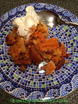 pumpkin dessert, Thanksgiving recipe