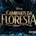 "Sessão Playlist | Ouça ""On the Steps of the Palace"" e ""Stay With Me"" de Caminhos da Floresta"