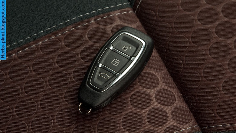Ford fiesta car 2013 key - صور مفاتيح سيارة فورد فيستا 2013