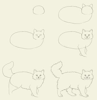 Bé tập vẽ con mèo