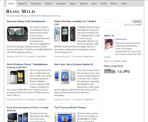 Blog Mild Blogger Theme