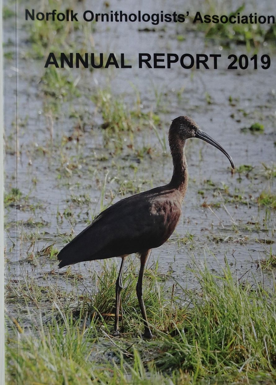 NOA ANNUAL REPORT 2019 is now available.