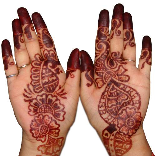 2011 Pakistani Hands Mehendi Designs for Party+%252810%2529 Mehndi On Hands