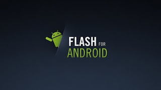flash player armv6