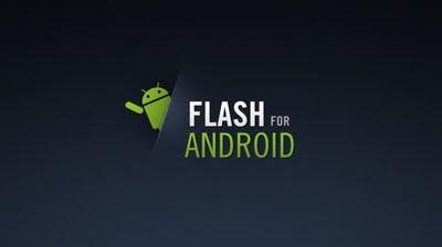 flash player armv6