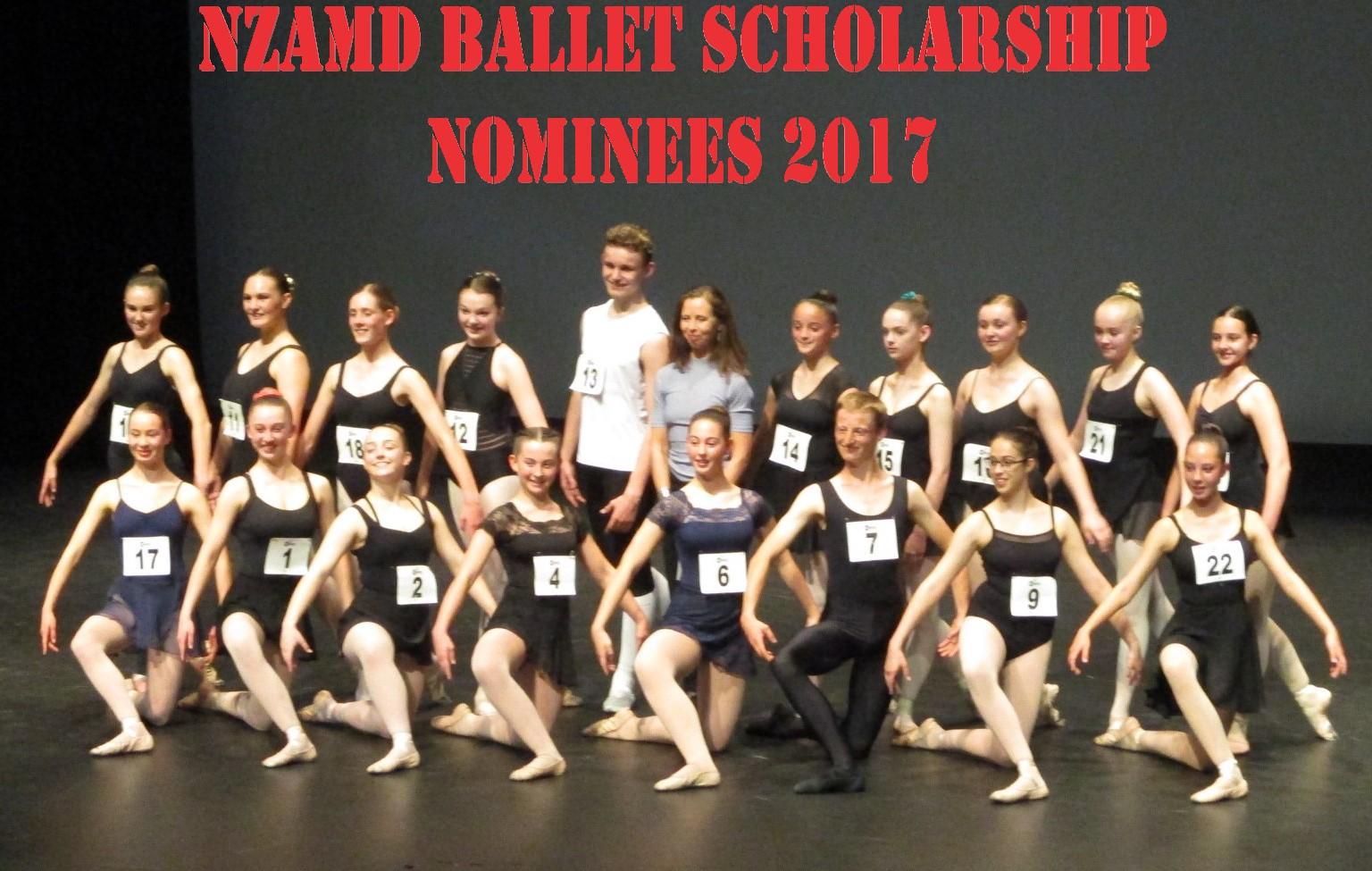 Finalist in 2017