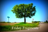 http://www.halfpastkissintime.com/2014/07/friday-fragments-episode-312.html