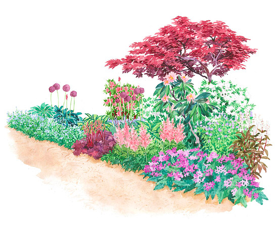 Gardening Tips For Beginners: Garden Plans For Shady Spots