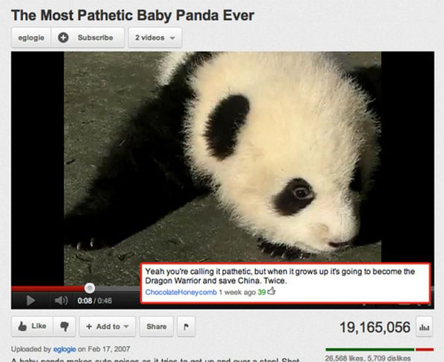 Really Funny YouTube Comments Damn Cool Pictures - The 26 funniest youtube comments of all time
