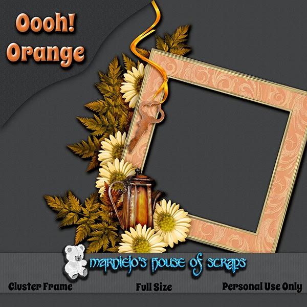 http://2.bp.blogspot.com/-M4NAi08iD_I/VFbbQHal1NI/AAAAAAAADjI/5mfskw8AohY/s1600/Oooh!Orange_ClusterFrame_preview.jpg