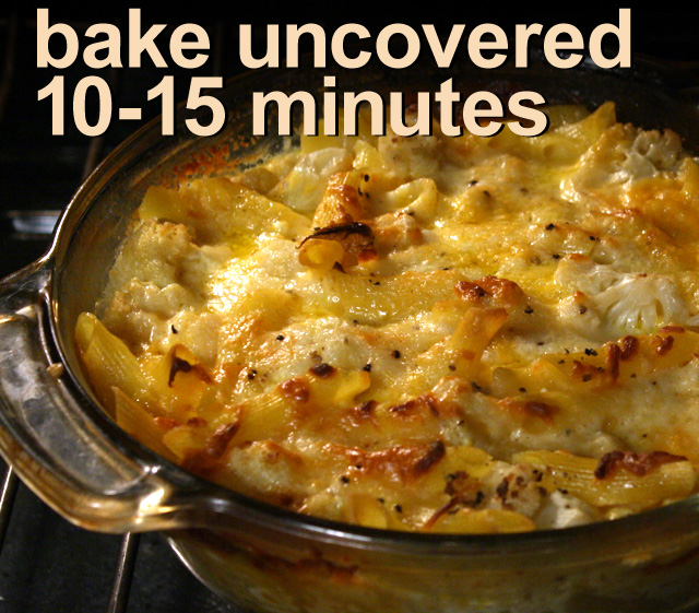 The 99 Cent Chef: Baked Pasta with Cauliflower & Cheese - VIDEO