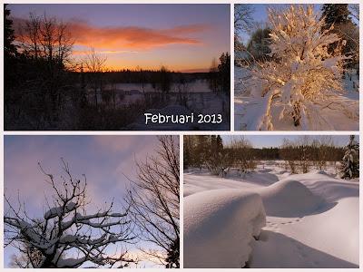 februari, 2013, kollage