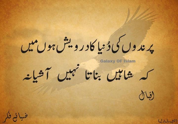 iqbal quotes urdu quotesgram