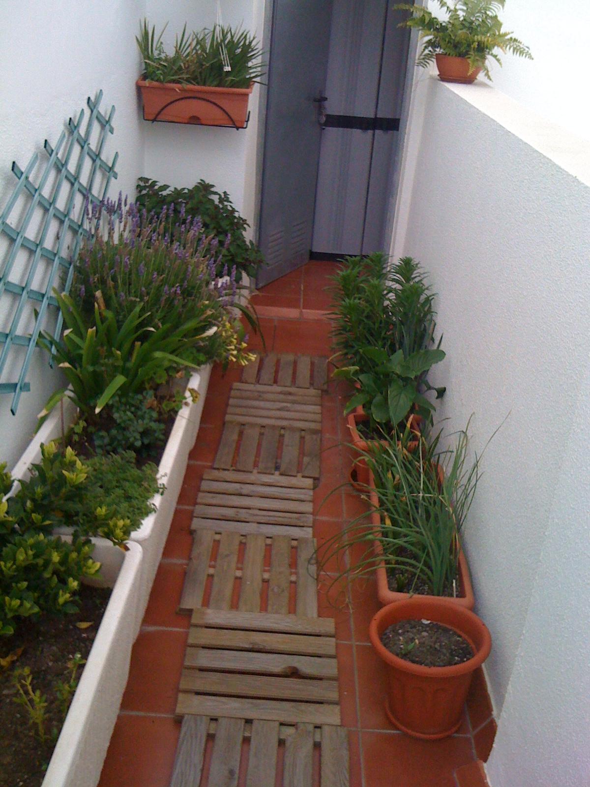 Un jardin el la azotea remodelando el jardin for Jardines pequenos y modernos