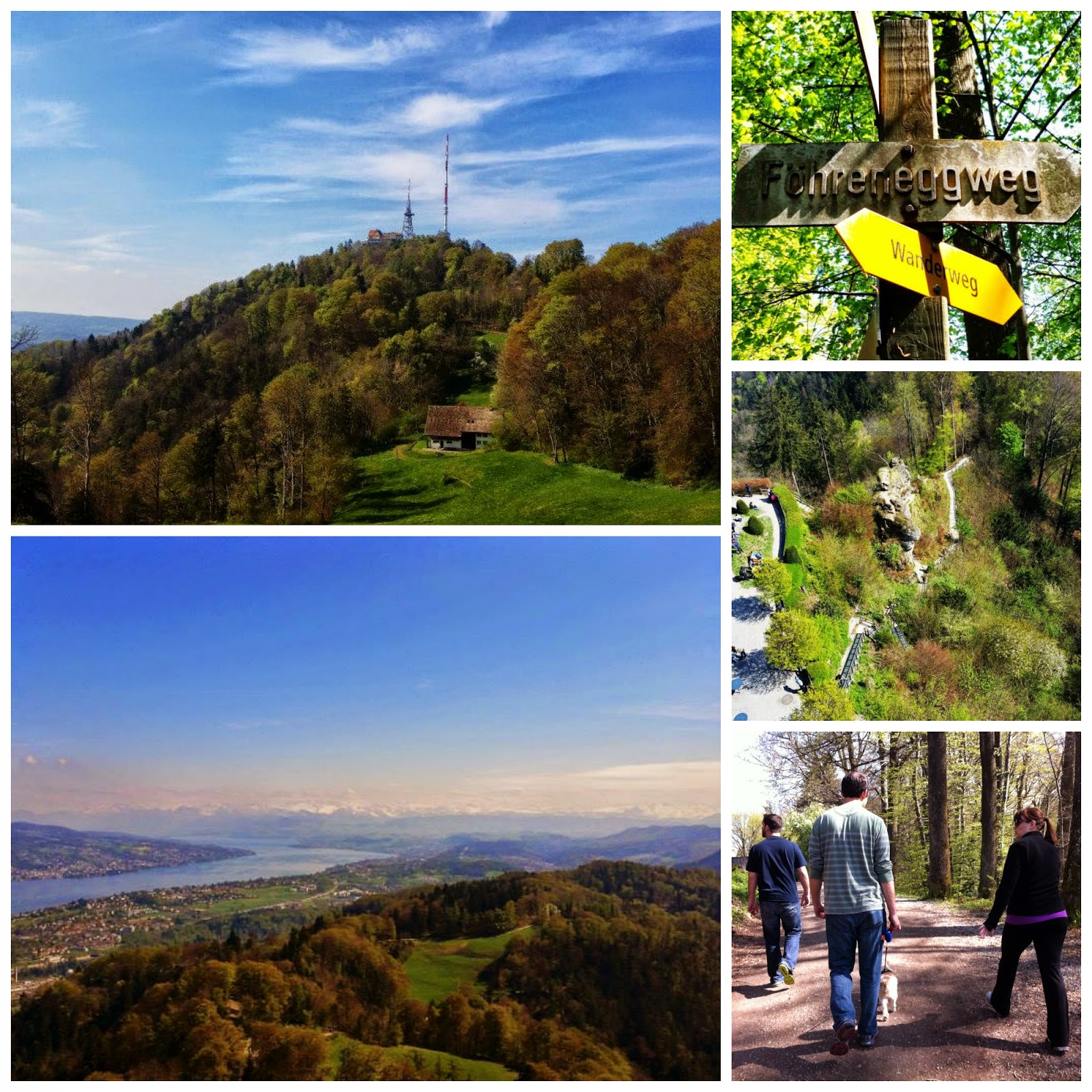 Hike the Uetliberg for the best views of Zurich, Switzerland and the Swiss Alps
