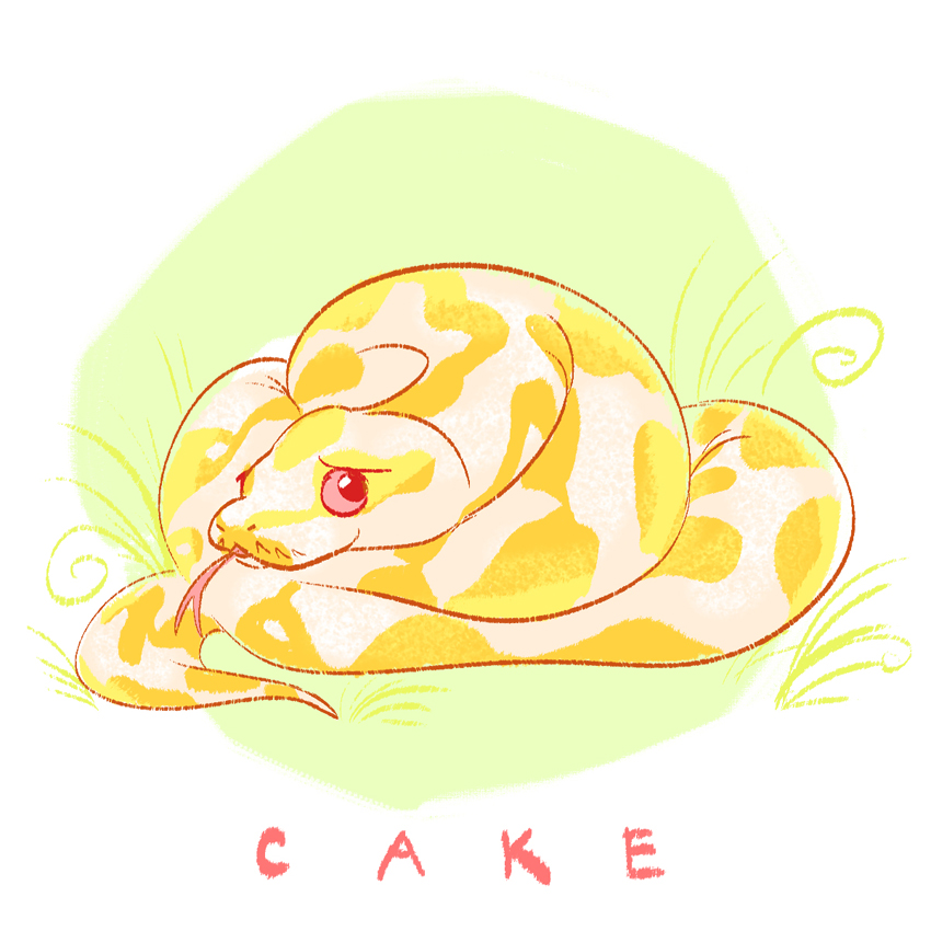 Python drawing cute for A cute drawing