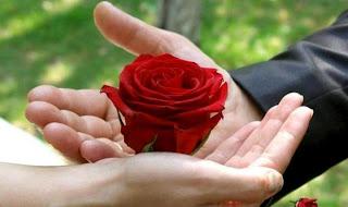 la belleza en tus manos Rosas en las manos