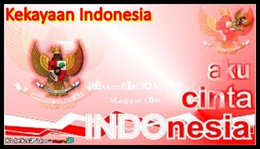 Jumlah Kekayaan Negara Indonesia dari Berbagai Segi Kehidupan - raxterbloom.blogspot.com