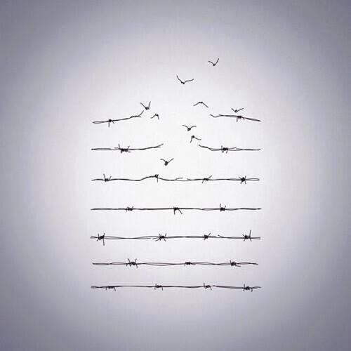 You born free...