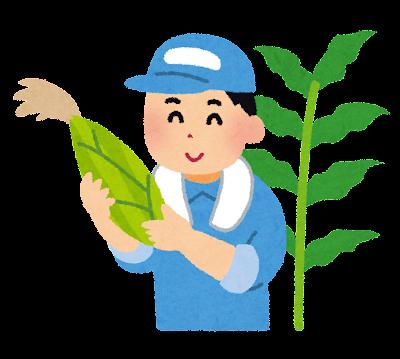 トウモロコシ農家のイラスト