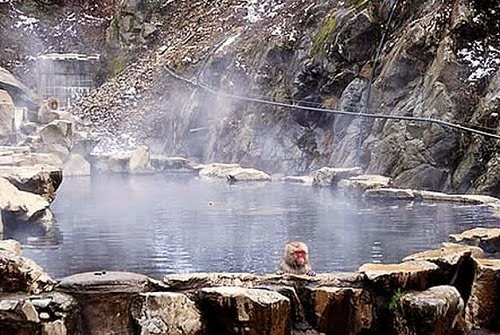 Top famous hot springs in Vietnam1