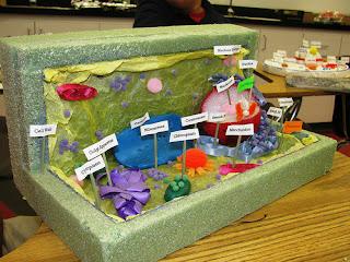 membuat model sel tumbuhan