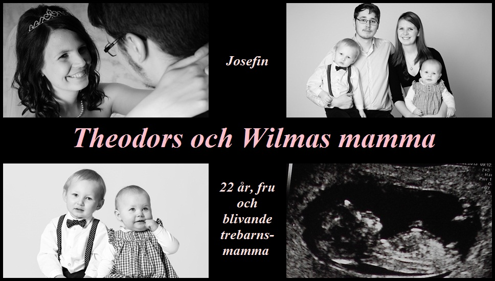 Theodors och Wilmas mamma