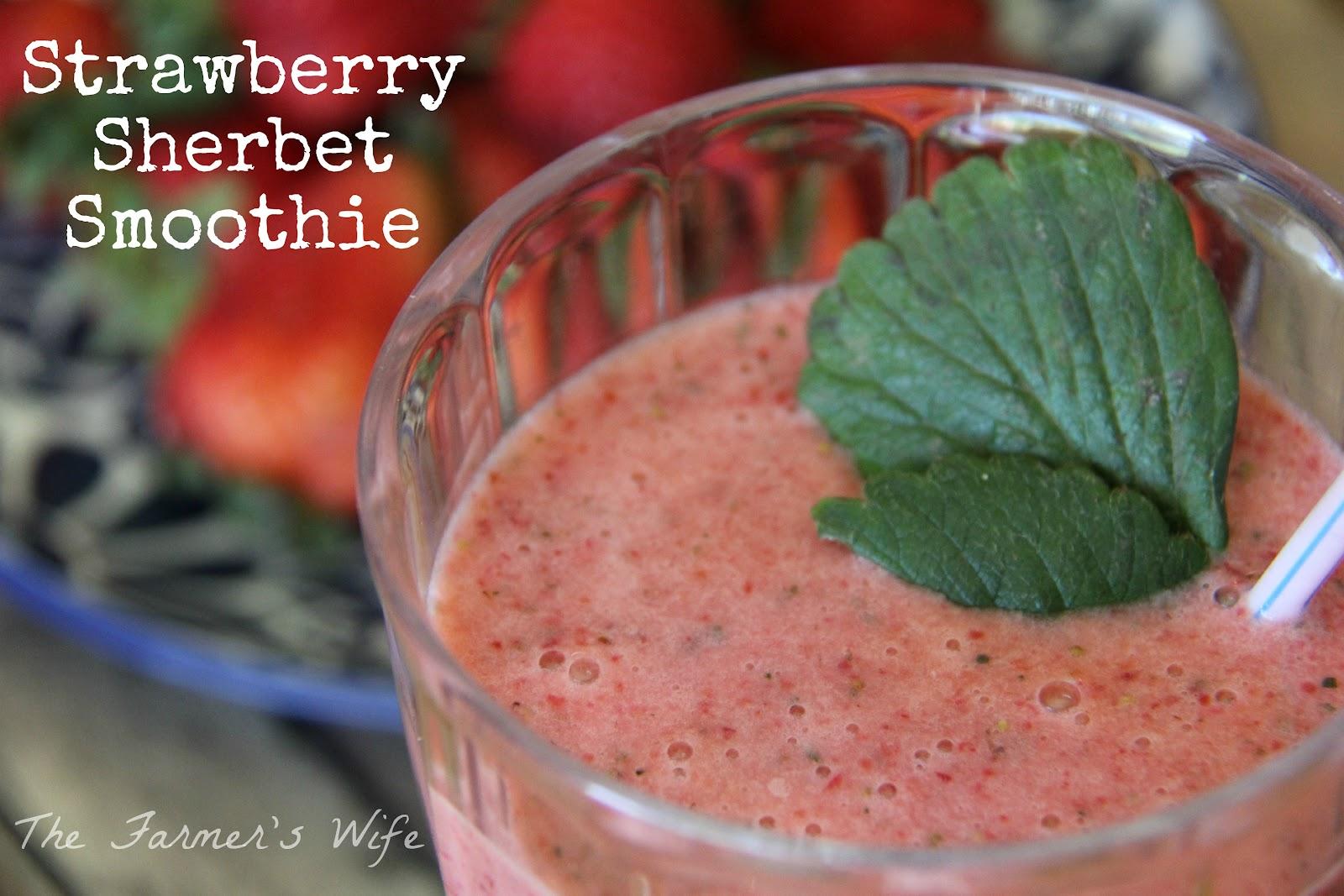 Frozen Strawberry-Banana Smoothie Sherbet - b a k e a h o l i cb a k e ...