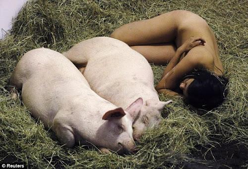 Gambar Foto Miru Kim Bugil Bersama Babi Selama 104 Jam