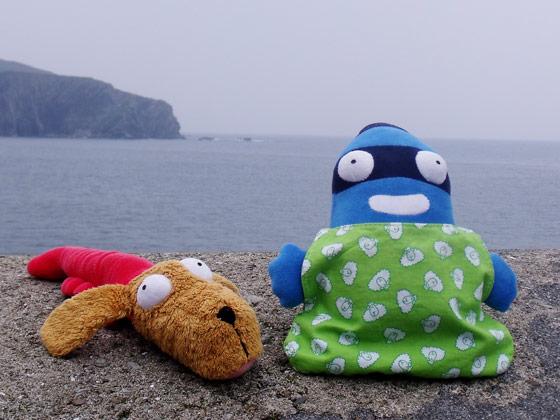 Gamberro y Edredón cerca del mar