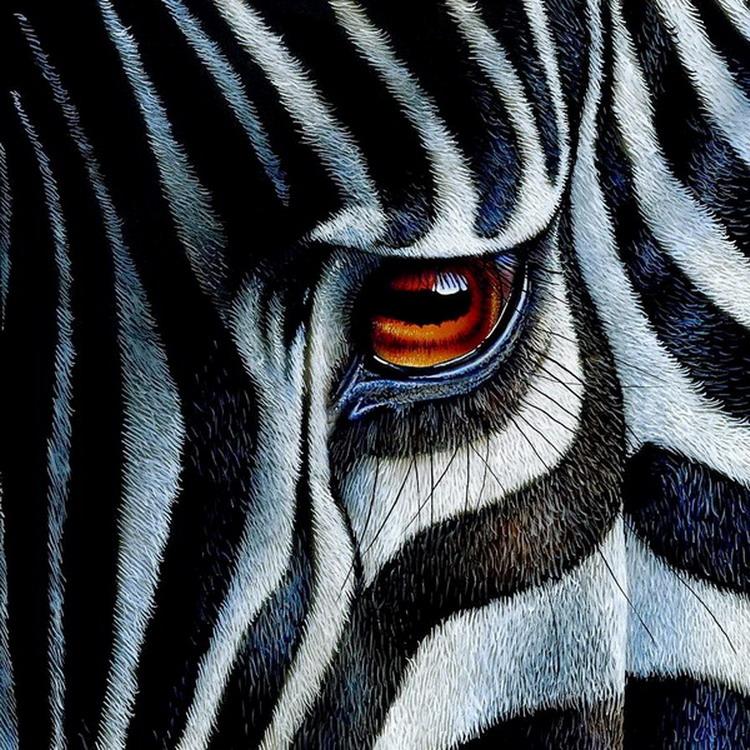 Im genes arte pinturas oleos rostros salvajes de animales - Cuadros de cebras ...