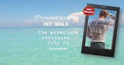 New Hot SEALs release from Cat Johnson