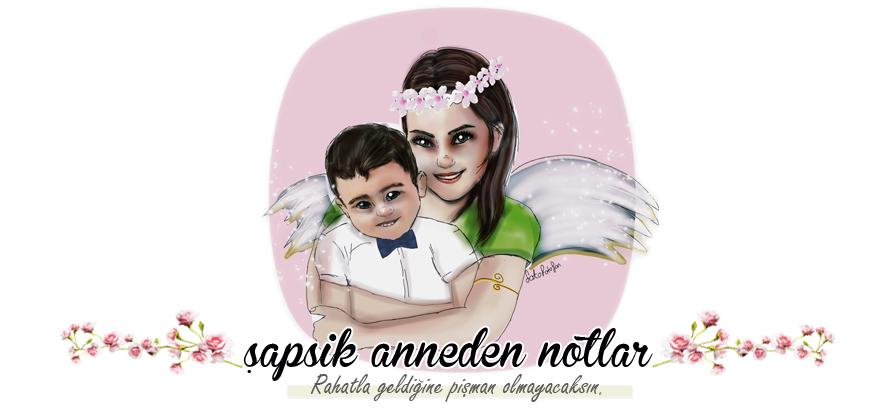 Şapşik Anneden Notlar :)