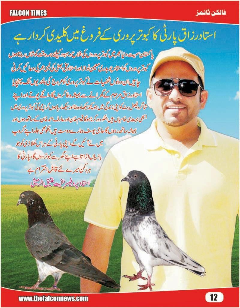 K Magazine Pigeon Falcon Times Pigeon Ma...