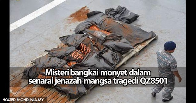 Misteri bangkai monyet yang dijumpai dalam pesawat AirAsia QZ8501