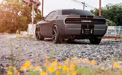 "Dodge Challenger aro 24"""