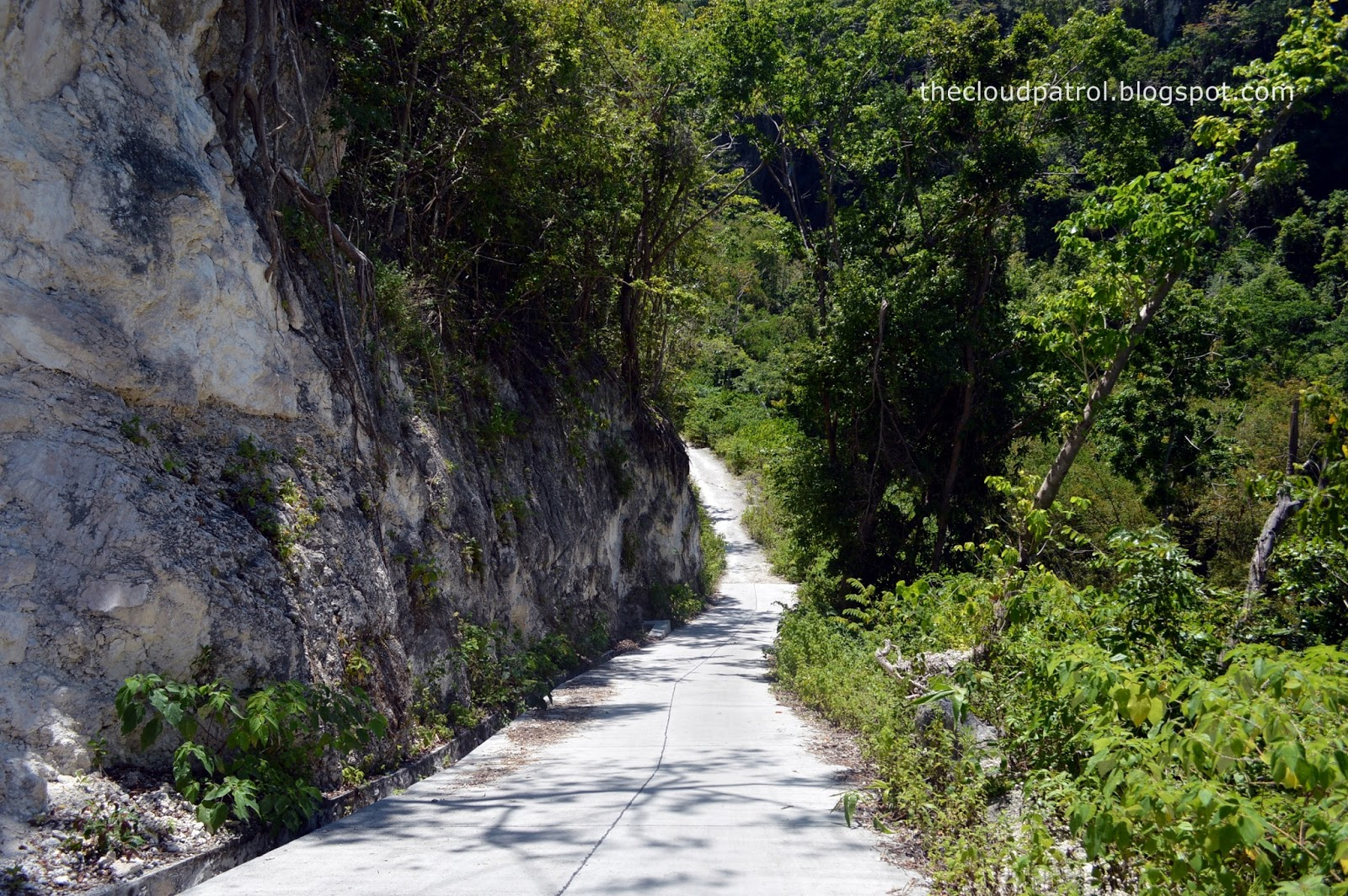 Butanding, whale shark, cebu, oslob, philippines, Tumalog, Waterfalls, mountain, hiking, hike, treking, trek