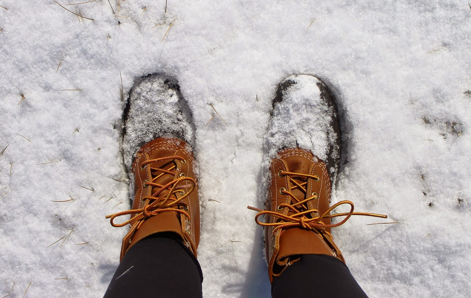 ll bean boots in the snow