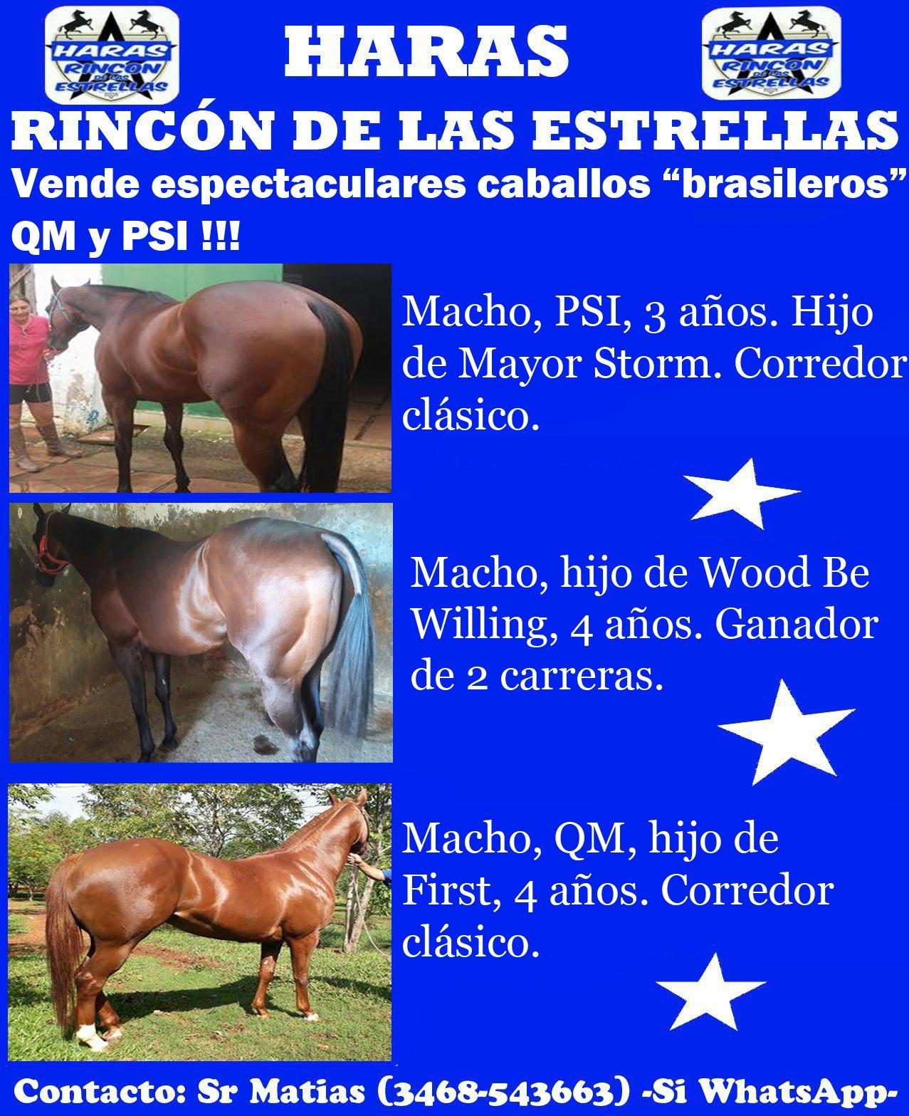 HS RINCON ESTRELLAS 2 QM