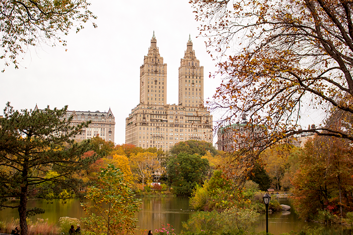 Fall in Central Park, NYC, New York