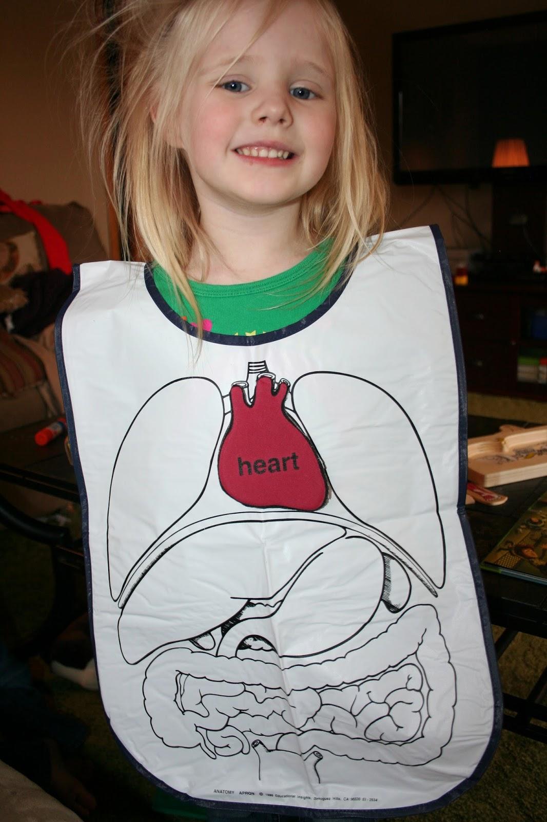 Our Country Road  Montessori Preschool Human Body Week  Part 1