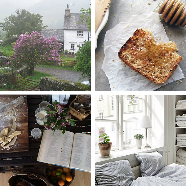 Bramble and Thorn, Spring, Moodboard